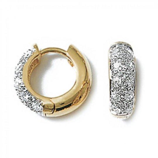 Petites Hoop Earrings...